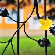 Öregek otthona: kerítés